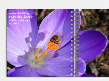 Fotobuch erstellen mit Ringbindung 21x21 cm