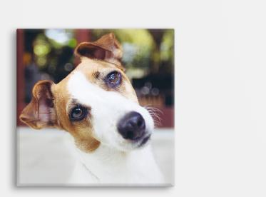 Foto auf Leinwand im quadratischen Format 20x20 cm selbst gestalten.