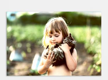 Ihr Foto auf Alu Dibond™ im Format 20x30 cm selbst gestalten.