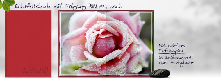 Echtfotobuch erstellen mit Prägung DIN A4