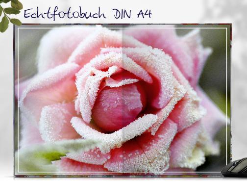 Echtfotobuch erstellen mit ScratchResist™ Veredelung